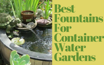 Best Fountains For Container Water Gardens