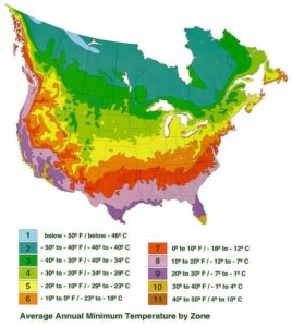 U.S.D.A. Plant Hardiness Zone Map
