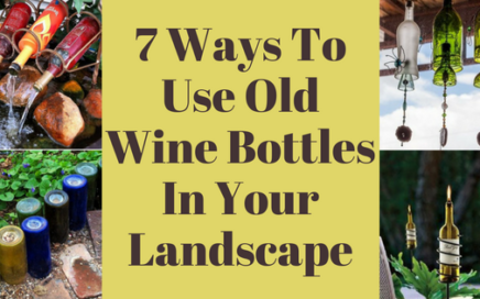 7 Ways To Use Old Wine Bottles In Your Landscape