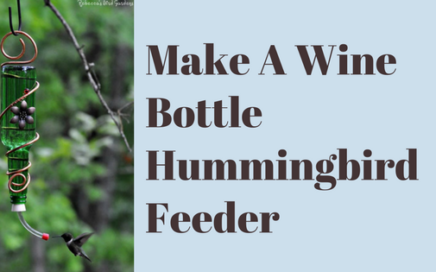 Make A Wine Bottle Hummingbird Feeder
