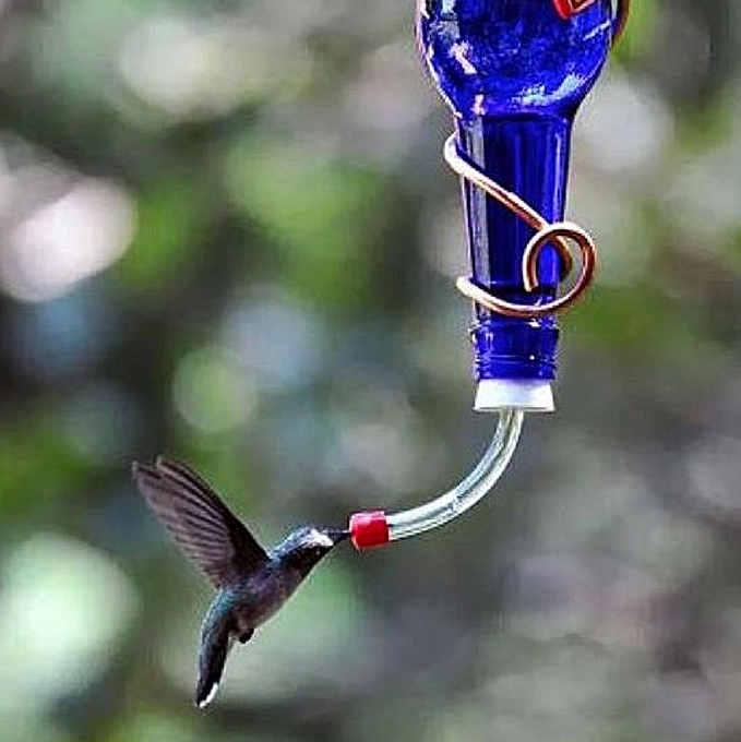 Make a Wine Bottle Hummingbird Feeder - Container Water