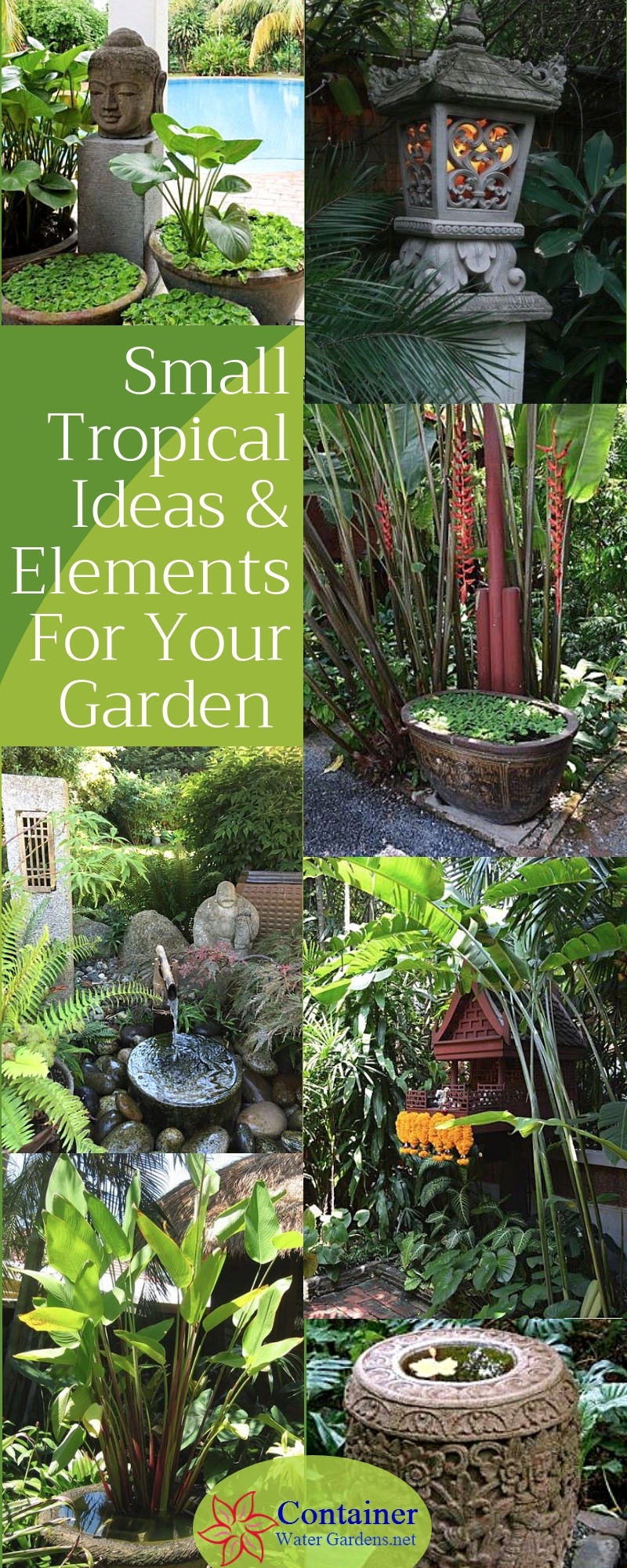Small Tropical Ideas & Elements For Your Garden ...